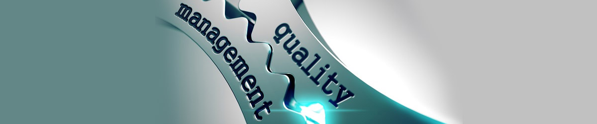 european-model-for-quality-management